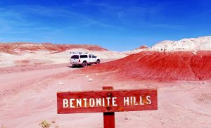 Click to review more details about bentonite.